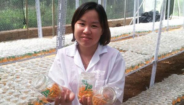 Cordyceps fungus gains wider Vietnam acceptance