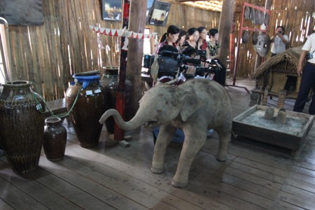 Overexploited, Dak Lak elephants are at risk, Don village