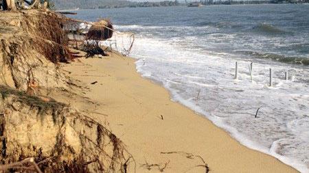 Sand overexploitation, deforestation worsen coastal erosion: expert