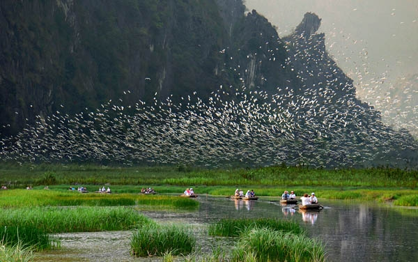 Two wetland conservation areas to be established in Vietnam
