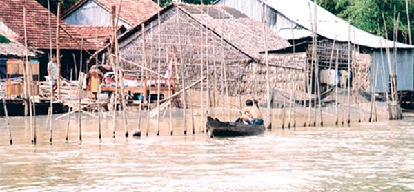 Mekong Delta, rice fields, food security, pollution control
