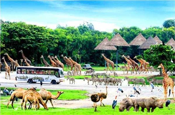 Phu Quoc; Vingroup, Vinpearl Safari