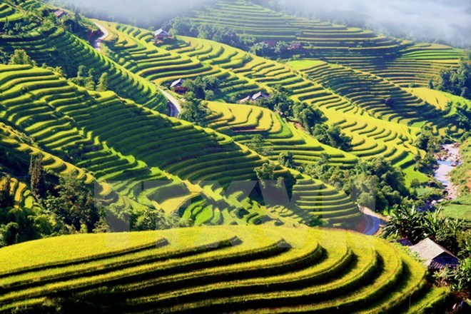 Cultural event spotlights Ha Giang's terraced paddy fields