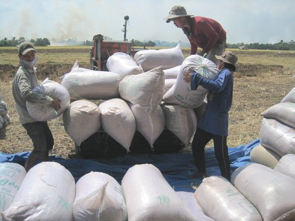 Vietnam, climate change, Mekong River Delta, floods