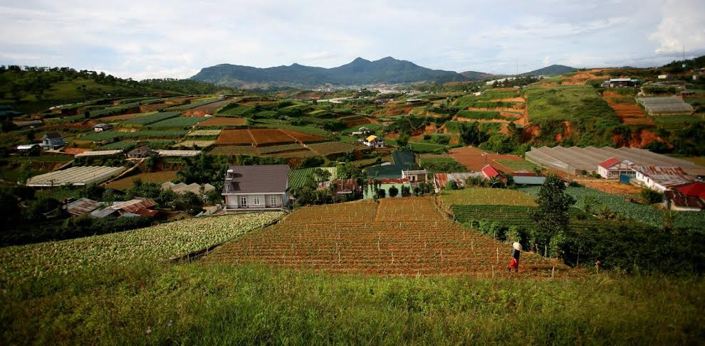 The challenges of Vietnam agriculture