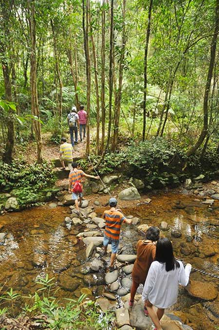 Bach Ma National Park, cool climate, trekking