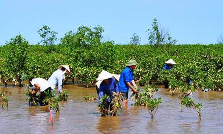 Vietnam commits to fight against climate change