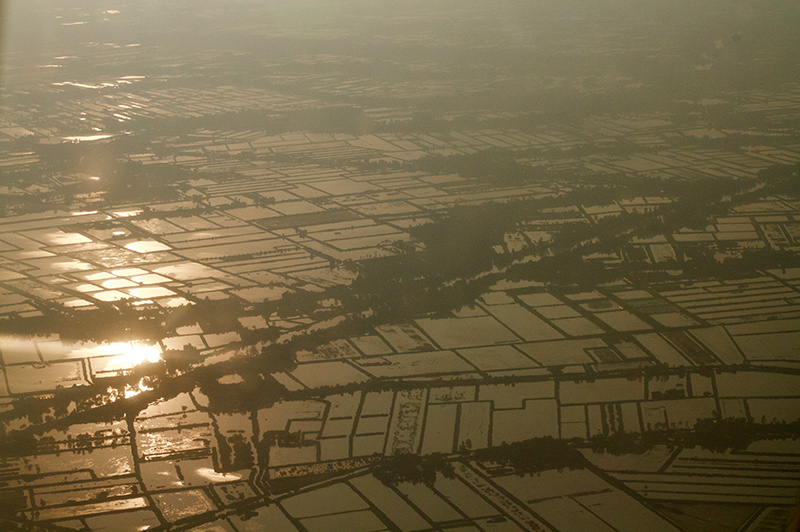 Climate change in Mekong Delta through pictures