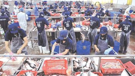 No big FTA impacts on Vietnam for 2016, vietnam economy, vietnamnet bridge, english news about Vietnam, Vietnam news, news about Vietnam, English news, vietnamnet news, latest news on vietnam,  Vietnam