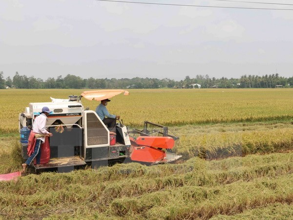 Venezuela ratifies agricultural cooperation deal with Vietnam, vietnam-venezuela cooperation, vietnam agriculture