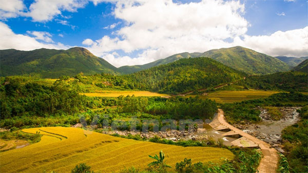 Quang Ninh, golden rice fields, terraced fields, tourist attractions, Vietnam economy, Vietnamnet bridge, English news about Vietnam, Vietnam news, news about Vietnam, English news, Vietnamnet news, latest news on Vietnam, Vietnam