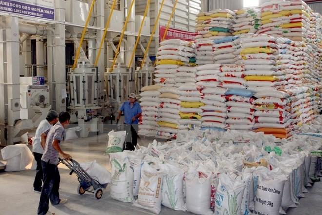 Indonesia needs 1 million tonnes of rice from Vietnam, vietnam rice, vietnam rice export, vietnam economy, vietnamnet bridge, english news, Vietnam news, news Vietnam, vietnamnet news, Vietnam net news, Vietnam latest news, Vietnam breaking news