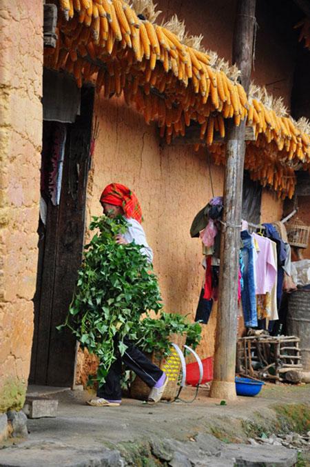 Dong Van Karst Plateau, Ha Giang, Pho Bang township, Vietnam economy, Vietnamnet bridge, English news about Vietnam, Vietnam news, news about Vietnam, English news, Vietnamnet news, latest news on Vietnam, Vietnam