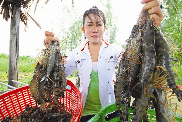 Seafood Companies Struggle, Rush To Finalise M&As