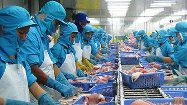 AEC could revolutionize fish & seafood industry - News VietNamNet