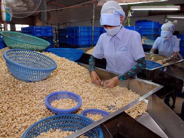 Vietnam's export sees lowest increase in five years, vietnam export, vietnam economy, business news, vietnamnet bridge, english news, Vietnam news, news Vietnam, vietnamnet news, Vietnam net news, Vietnam latest news, Vietnam breaking news