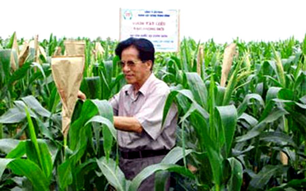 sugar mills in vietnam Peruvian sugar mills looking for parts and technology upgrades peruvian sugar refineries looking for upgrades and maintenance solutions  vietnam, india and.