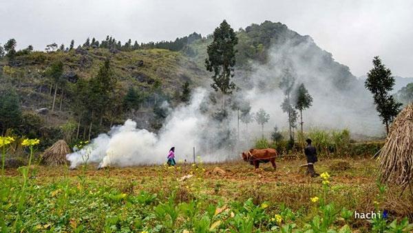 Peaceful mountainous village in Ha Giang