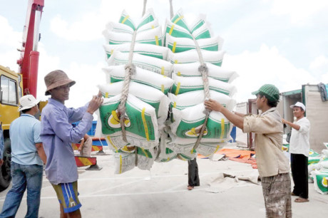 Rice exports: Vietnam's low-price advantage won't help