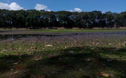 Ba Om Pond – famous tourist site in Tra Vinh dries up