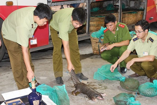Wildlife trafficking poses risks to public health