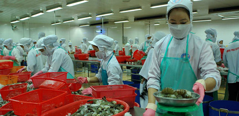 Duties on Vietnam shrimp sent to US increased