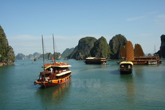 Less wooden ships to be seen in Ha Long Bay, social news, vietnamnet bridge, english news, Vietnam news, news Vietnam, vietnamnet news, Vietnam net news, Vietnam latest news, vn news, Vietnam breaking news