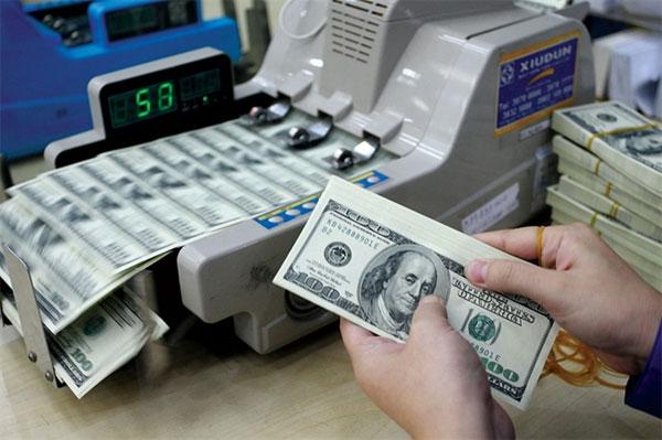 Dollarization, foreign exchange policy, stabilised foreign exchange market, Vietnam economy, Vietnamnet bridge, English news about Vietnam, Vietnam news, news about Vietnam, English news, Vietnamnet news, latest news on Vietnam, Vietnam