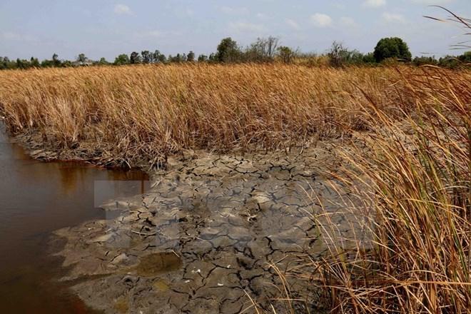 Vietnam seeks Netherlands' help in preserving water in Mekong Delta, environmental news, sci-tech news, vietnamnet bridge, english news, Vietnam news, news Vietnam, vietnamnet news, Vietnam net news, Vietnam latest news, Vietnam breaking news, vn news