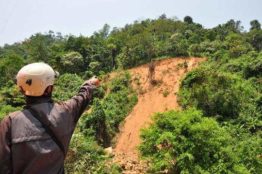 Quang Ngai: Hydropower plant suspended for destroying forest, dak re hydropower plant, deforestation, social news, vietnamnet bridge, english news, Vietnam news, news Vietnam, vietnamnet news, Vietnam net news, Vietnam latest news, vn news