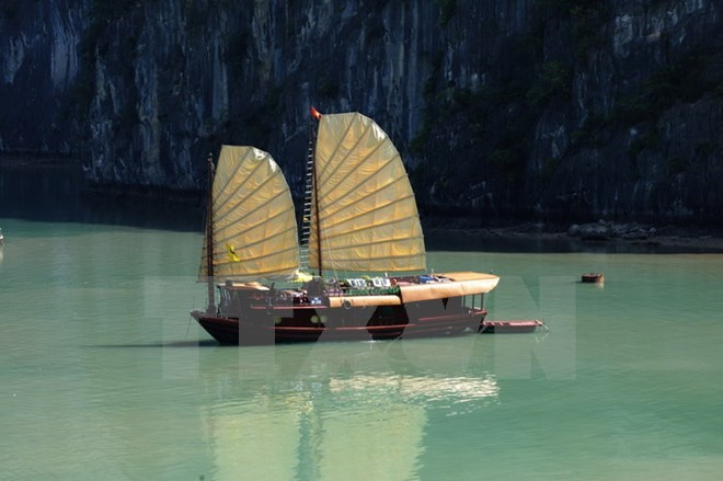 Cruises give a new breath of fresh air to Vietnamese tourism