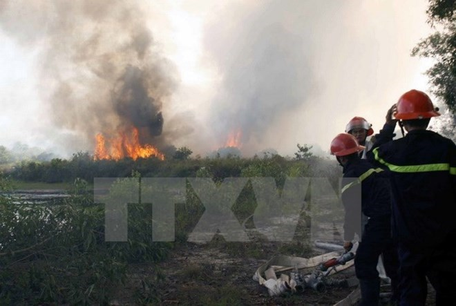 Climate change: southern forests on high alert for fire, social news, vietnamnet bridge, english news, Vietnam news, news Vietnam, vietnamnet news, Vietnam net news, Vietnam latest news, vn news, Vietnam breaking news