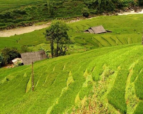Mart du lich truc tuyen Viet Nam chinh thuc mo