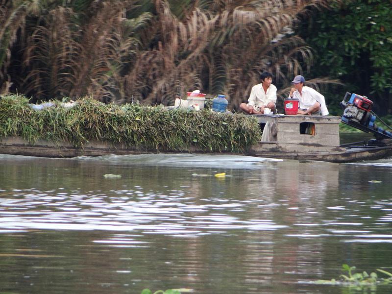 Saltwater intrusion worsens in HCM City, social news, vietnamnet bridge, english news, Vietnam news, news Vietnam, vietnamnet news, Vietnam net news, Vietnam latest news, vn news, Vietnam breaking news