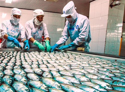 VN Seafood Exports To Benefit From TPP