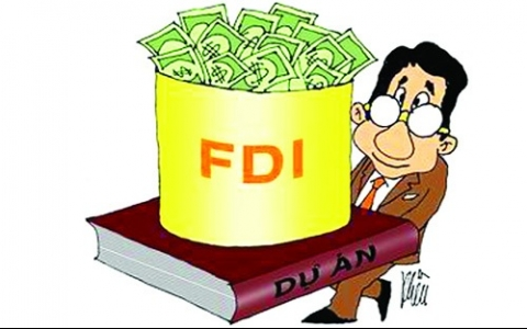 FDI by sector and challenges: garnering interest
