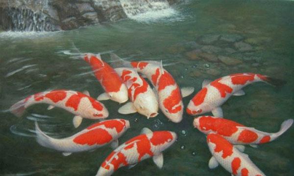 Hcm city casts a bigger net for ornamental fish market for Ornamental fish