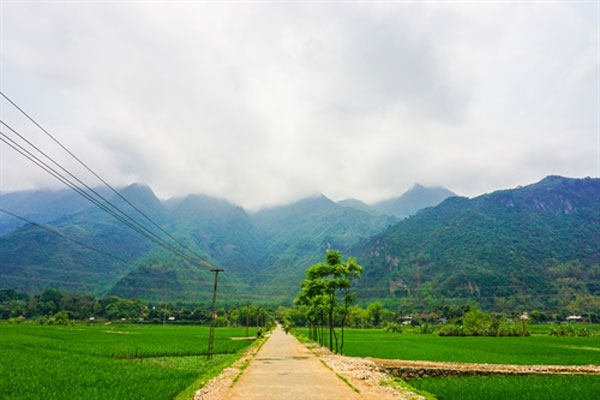 Mai Chau Homestay, Lac Village, Vietnam economy, Vietnamnet bridge, English news about Vietnam, Vietnam news, news about Vietnam, English news, Vietnamnet news, latest news on Vietnam, Vietnam