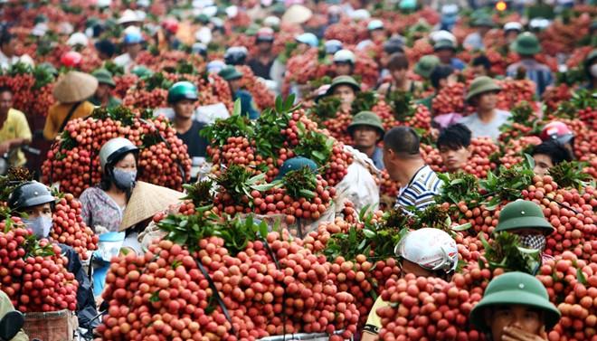 Bac Giang Vietnam  city photos gallery : in Vietnam, travel news, Vietnam guide, Vietnam airlines, Vietnam ...