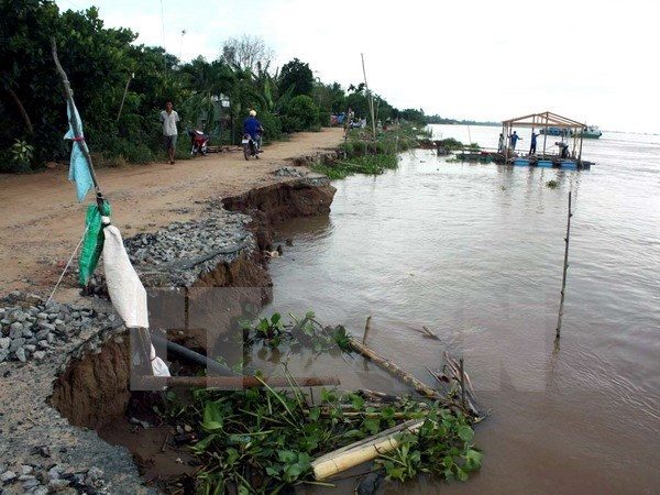 Mekong River Delta faces risks of landslides