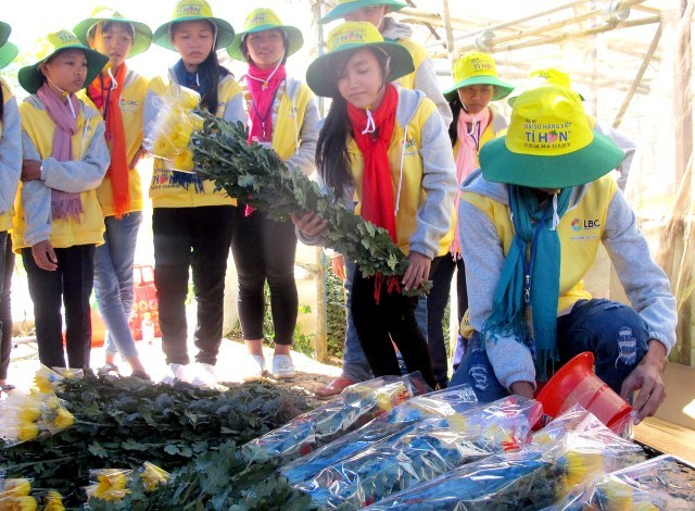 Summer camp brings valuable experiences to children, Danang dismisses officials following fatal tourist boat sinking, Quang Ninh: Lightning kills two, injures four, US expert trains doctors in palliative care