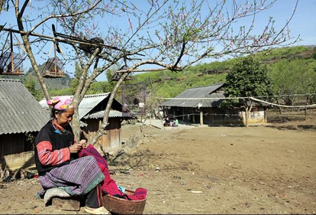 Ministry to review Moc Chau tourism plan
