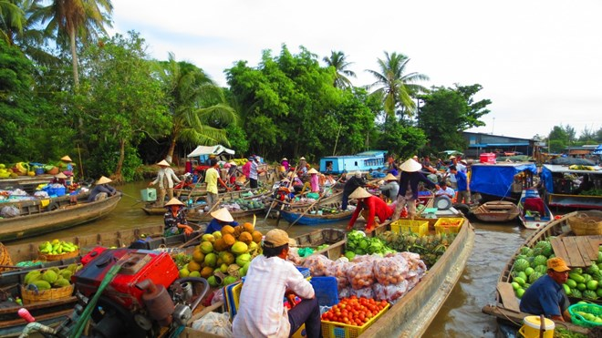 HCM City to host Mekong Delta Forum on climate change, environmental news, sci-tech news, vietnamnet bridge, english news, Vietnam news, news Vietnam, vietnamnet news, Vietnam net news, Vietnam latest news, Vietnam breaking news, vn news