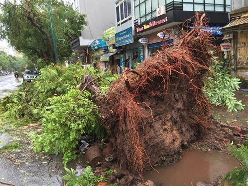 Typhoon Mirinae ravages northern Vietnam, kills two