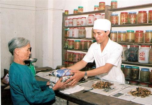 Traditional herbal medicines, herbal medicines, poor quality, Vietnam economy, Vietnamnet bridge, English news about Vietnam, Vietnam news, news about Vietnam, English news, Vietnamnet news, latest news on Vietnam, Vietnam