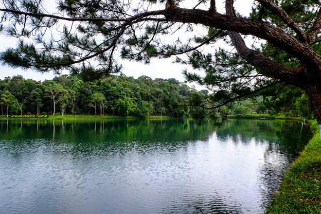 Bao Loc tourism destination dreamy in autumn