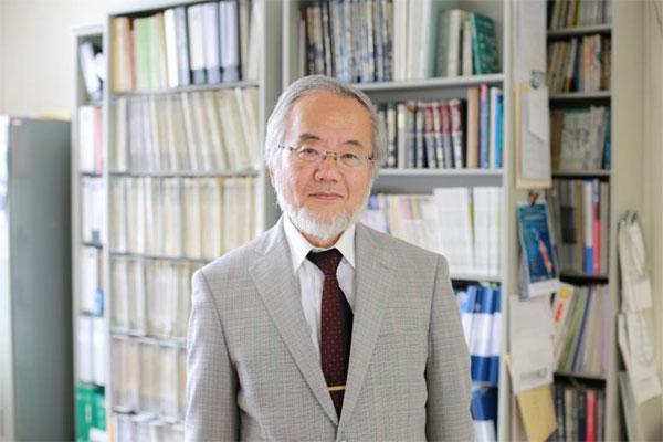Japanese scientist wins Nobel medicine prize for work on 'self-eating' cells