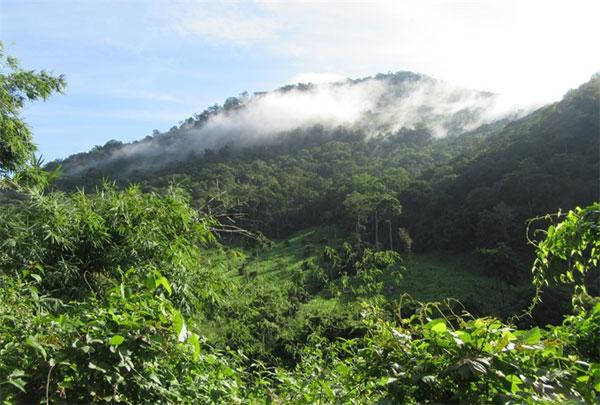 Stories through the lens: Phuoc Binh National Park