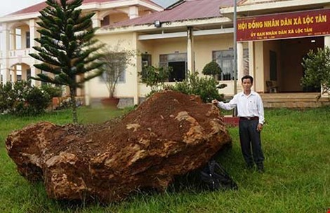 Lam Dong province to auction 20 ton precious rock, social news, vietnamnet bridge, english news, Vietnam news, news Vietnam, vietnamnet news, Vietnam net news, Vietnam latest news, vn news, Vietnam breaking news