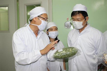 Vietnamese scientists invent new technology to preserve farm produce